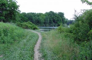 Blue-Marsh-Trail-USACE-PA01