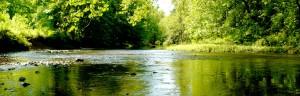 wilma quinlan nature reserve